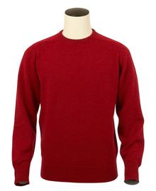 Logan, Couleur Poppy, Pull Ras de cou en 100% lambswool - Vêtements laine geelong